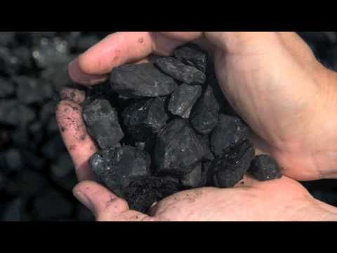The Effects Of Coal On The Environment