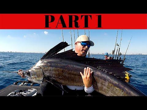 RECORD SIZE SAILFISH FROM KAYAK, DANIA BEACH KAYAK FISHING, SAILFISH FOR DINNER??? PART 1