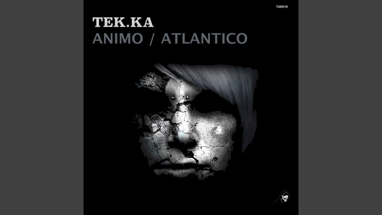 Download Animo (Original Mix)