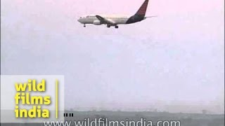 Air Sahara plane landing at Indira Gandhi International Airport, Delhi