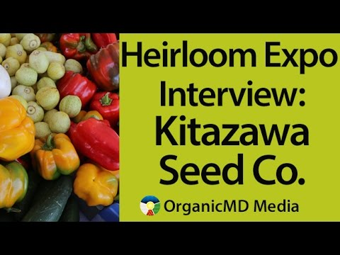 Good Seeds Grow Great Things: Our Interview with Kitazawa Seed Company