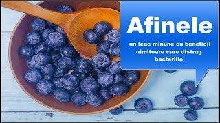 Cum este afine utile pentru ochi și viziune? - Boală September - Viziune îmbunătățită cu afine