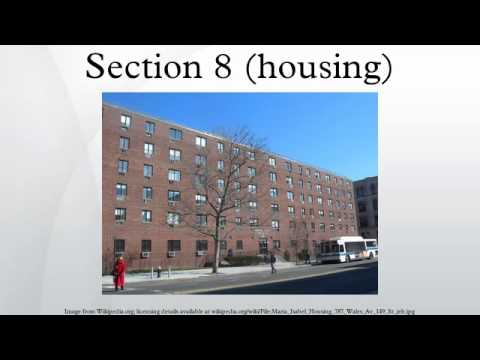 Section 8 (housing)
