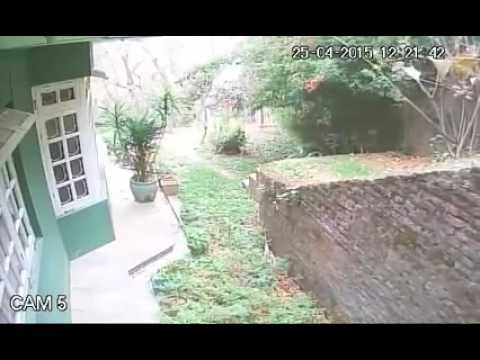 CCTV Catches Violence of Nepalese Earthquake Part 1