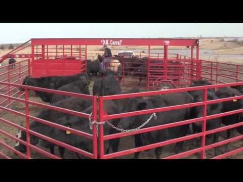MrTruck.com tours Titan West Cattle Equipment in Kansas