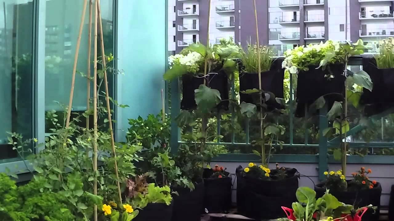 un jardin sur le toit trailer youtube. Black Bedroom Furniture Sets. Home Design Ideas