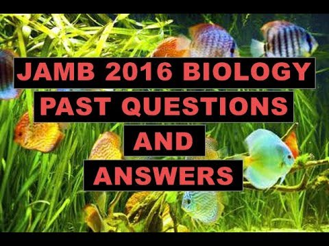 JAMB/UTME Biology 2016 Past Questions and Answers - Q1-10