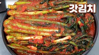갓김치 맛있게 담그는법 톡쏘고 알싸한 여수돌산갓김치 /…