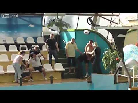 Major Brawl In Oceanarium in Russia