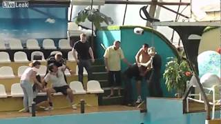 Major Brawl In Oceanarium in Russia