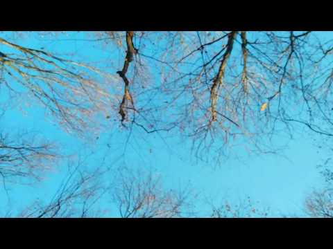 Высоцкий - Песня о друге - Стих (Моё прочтение)
