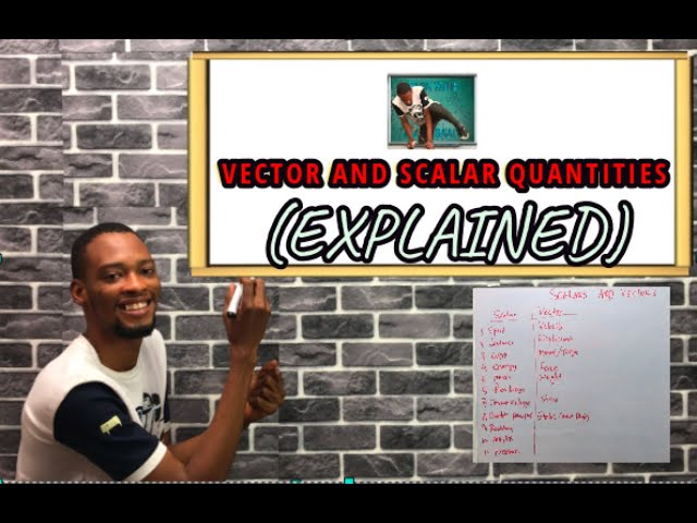 Scalar And Vector Quantities In Physics (Explained)