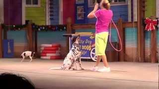 Seaworld Pets Ahoy show November 2012