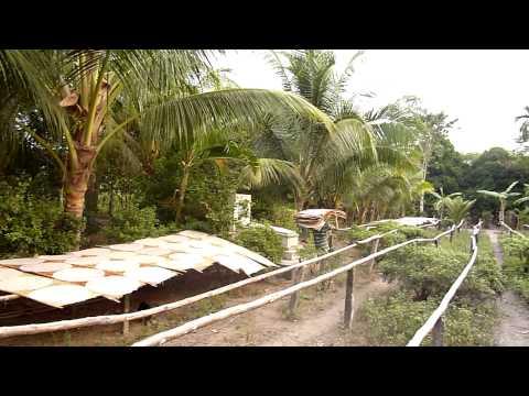 00192-rice-noodle-factory-mekong-delta-rizsteszta-gyarban