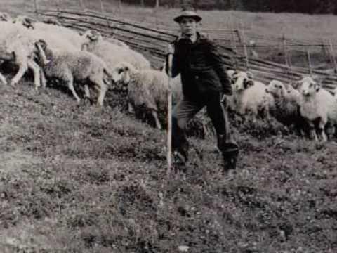 Miorița / Old pastoral epic ballad
