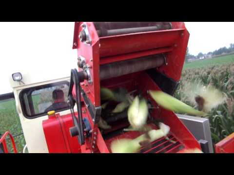4YZ 3 Corn transportation, import the granary