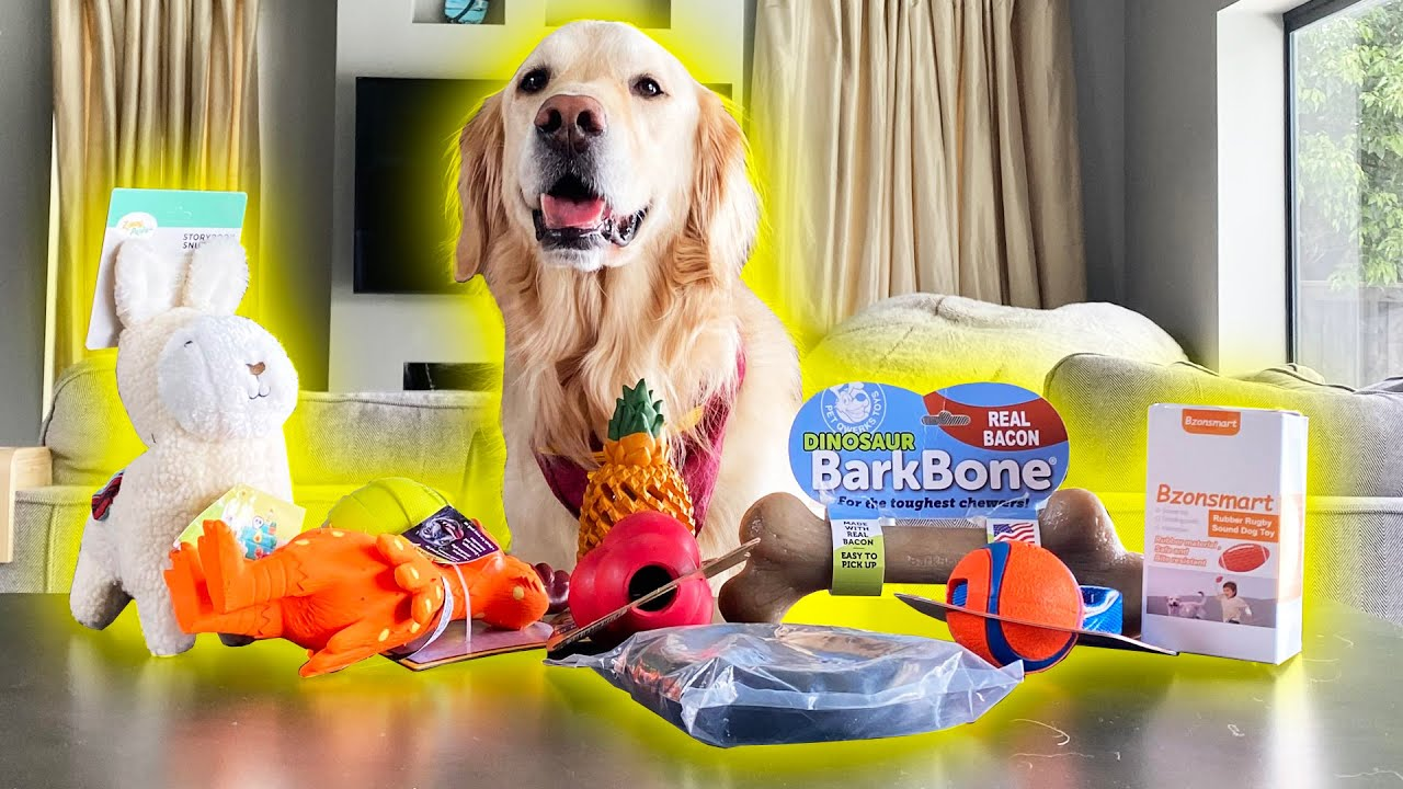 TOP 10 BEST REVIEWED DOG TOYS ON AMAZON! (Super Cooper Sunday #254)