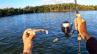 A THUMP Like None Other Everglades Fishing