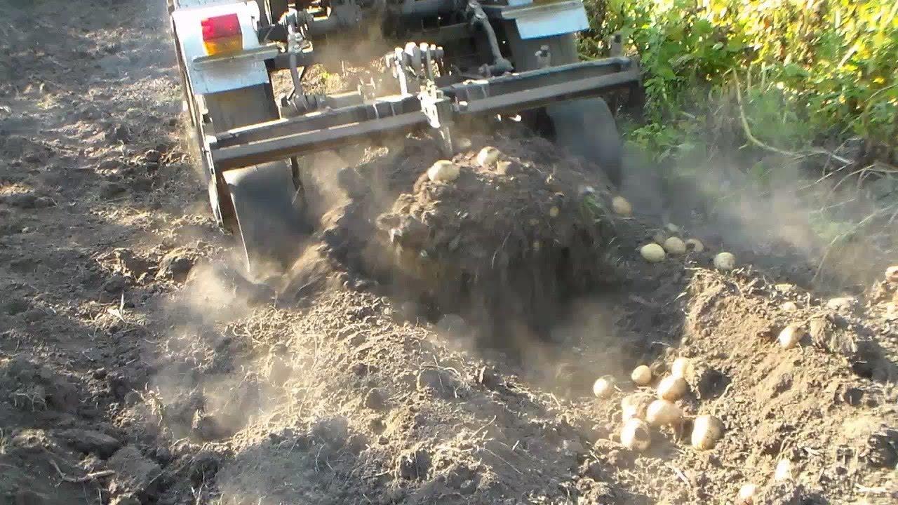 Купить картофелекопатели и картофелекопалки, навесные и прицепные, кст ктн кн, уборочную технику новую и б/у объявления о продаже, цены и спрос. Копалка «бомет» польша предназначена для выкапывания картофеля, свеклы, моркови и других клубненосного растений. Копалку рекомендуется.