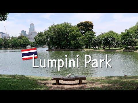 Walking in Lumpini Park (Lumphini Park), Bangkok : Oasis in a busy city [สวนลุมพินีกรุงเทพฯ]