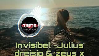 Invisible - julius dreiseg & zeus X Crona Tebex mix