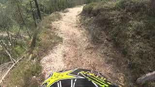 Downhill Crash on Lisna Berg