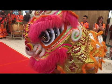 Seow Lim Teck Eng Tong Lion Dance Cai Qing Performance At Forum The Shopping Mall 4 Feb 2017