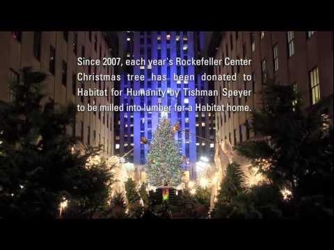 David Fisch - Ever Wonder What Happens To The Rockafeller Center Christmas Tree??