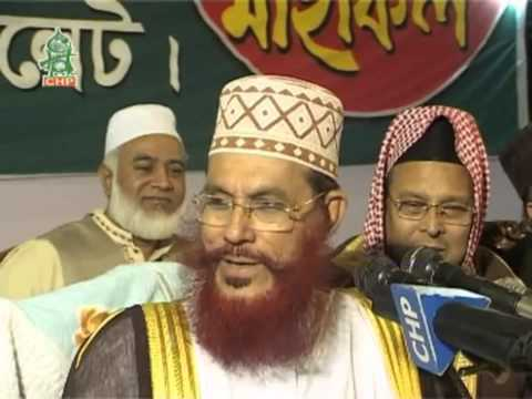 Bangla Waz by Allama Delwar Hossain Sayeedi Sylhet 2009 day 3 Part 2 bangla waj HD)