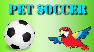 ANNOYING PARROT | PET SOCCER