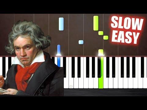 Beethoven - Fur Elise - SLOW EASY Piano Tutorial by PlutaX