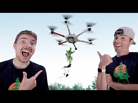 using-drones-to-plant-20,000,000-trees