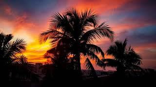 Картинка закат. Пальмы, облако, солнечный лучик, солнце, рассвет, восход, небо, закат солнца.