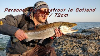 Gambar cover Seatrout from Gotland