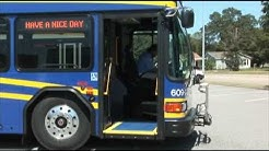 Transit Division Developments: Four New Buses
