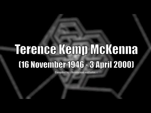 Terence McKenna - Amazing Quotes