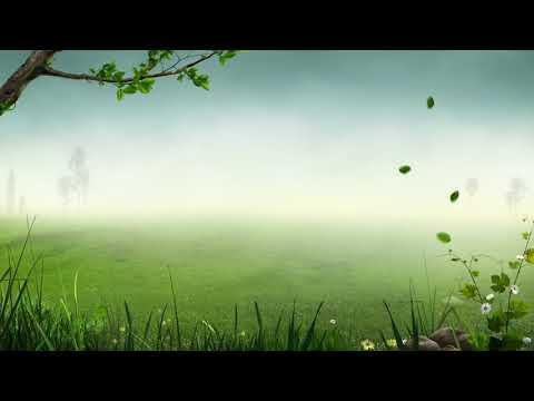 ดนตรีเพื่อสมาธิ (ผ่อนคลาย บำบัดความเครียด) (เพลงบรรเลงขลุ่ยจีน)