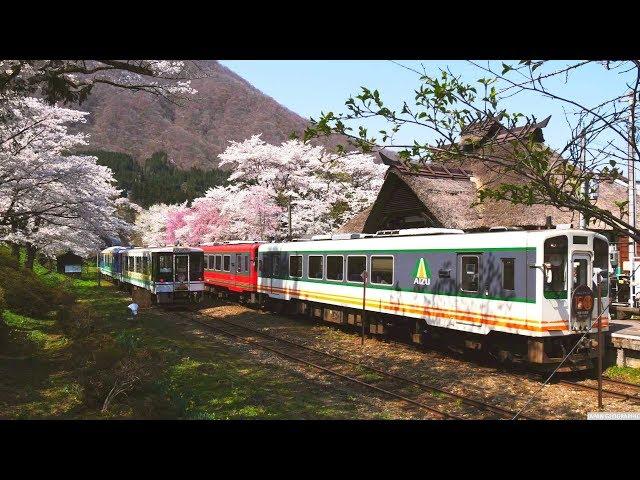JG 4K HDR 福島 桜の湯野上温泉駅 Fukushima,Sakura at Yunokamionsen Station