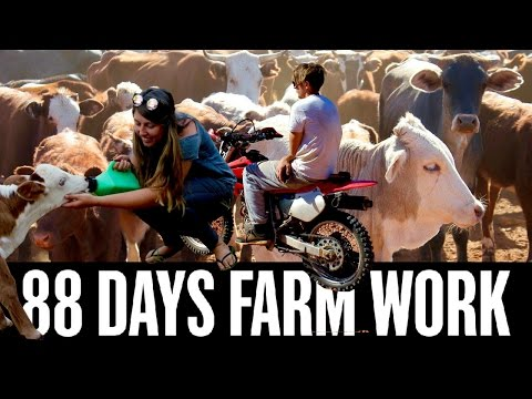 88 DAYS WORKING ON A CATTLE STATION AUSTRALIA (OUTBACK) - FARM WORK HIGHLIGHTS