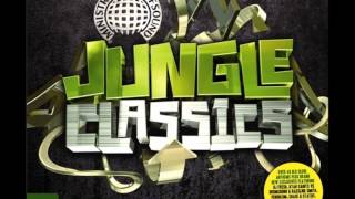 13. Goldie & Rufige Kru  - Terminator (Jungle Classics)