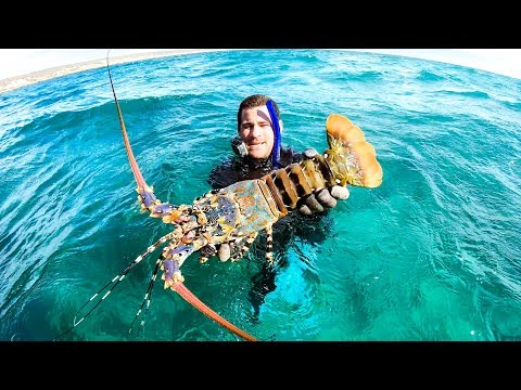 giant-crayfish-mud-crab-and-coral-trout-family-feast-catch-and-cook---ep-100
