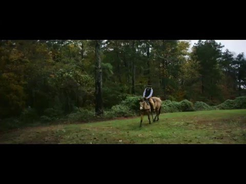 See Cumming, Georgia, through the Eyes of the Horse Whisperer Stan Estes thumbnail
