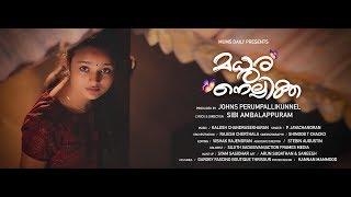 Madhuranellikka  Malayalam Music   New Album Song  മധുരനെല്ലിക്ക