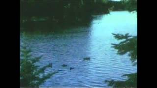 wun two - seasons (beattape)