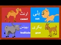Learn Animal Names in Urdu and More | جانور کے نام | Urdu Kids Rhymes Collection