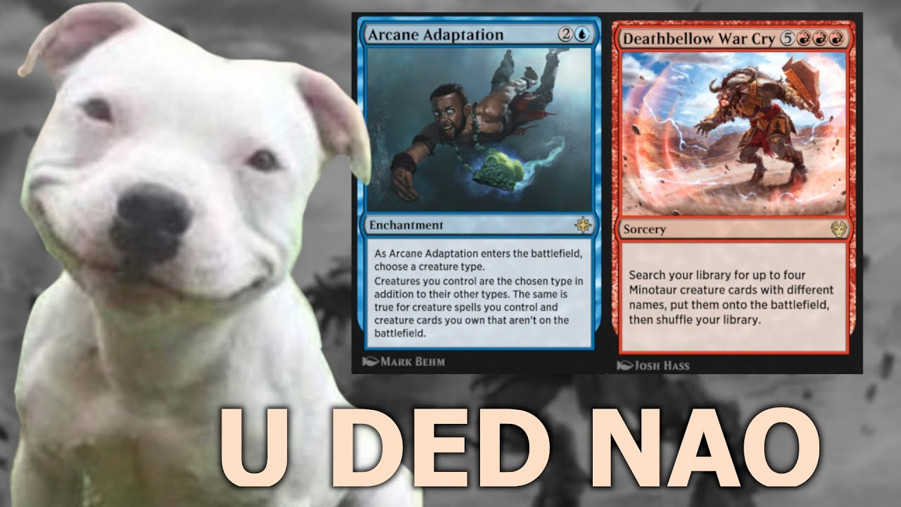 TWO CARDS, 40+ DAMAGE! Deathbellow Adapation Dragons Historic MTG Arena