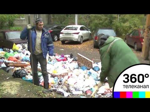 Подмосковное Пушкино погрязло в мусоре