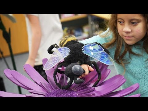 School of Education brings maker movement to local schools