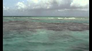 Atoll de Fakarava - les plages roses d