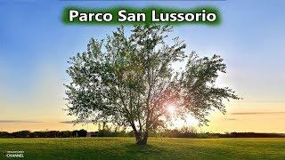 Prati Verdi del Parco di San Lussorio a Selargius ~ 22 Giugno 2016 | Vivere a Cagliari